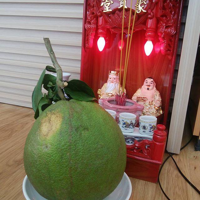 ベトナムフルーツ Buoi王様にお供えしてから食べるます