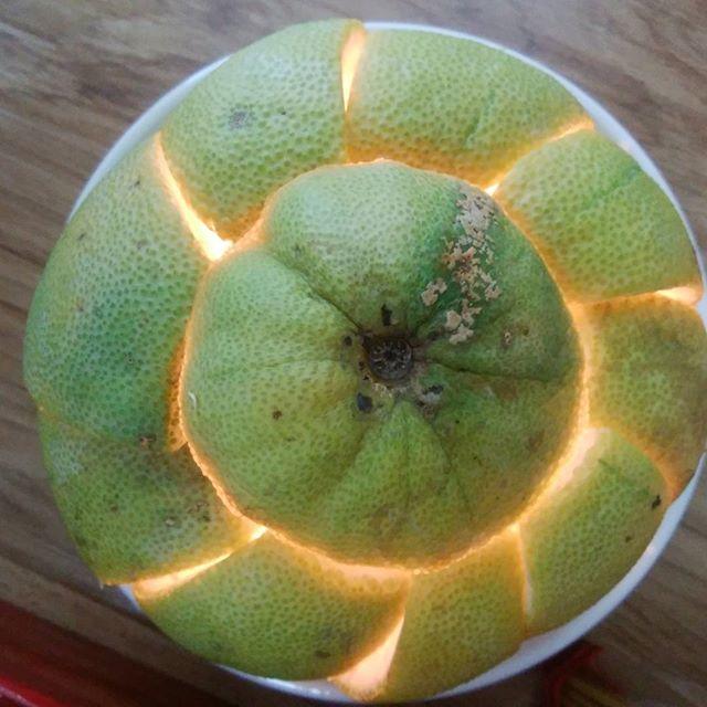 スタッフがめっちゃオシャレなライトを作ってくれました!このライト、ベトナムのグレープフルーツに似たフルーツの皮で出来てますオシャレなだけじゃなくて柑橘系のとてもいい香りがします灯りはロウソクです簡単につくれるのでみなさんもぜひ作ってみてください(*´∀`*)ノホーチミンの日本人ゲストハウス兎家(うさぎや)ゲストハウスusagiyah.com#usagiyah #兎家 #兎家ゲストハウス #うさぎや #日本人宿 #ゲストハウス #ドミトリー #Guesthouse #ベトナム #Vietnam #ホーチミン #バックパッカー #バックパッカー女子 #一人旅 #海外旅行 #オシャレなライト #フルーツライト #グレープフルーツ
