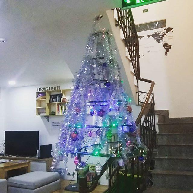 今日から12月。もう今年も残すところ1ヶ月ですね。ほんとあっという間…(;´д`)ところで12月といえばクリスマス!過去はサンタクロース撲滅協会に属していましたが、この仕事を始めたからにはクリスマスも利用しなくてはなりません。昨日からスタッフがクリスマスの飾り付けの準備をしていましたが、なにをしてるのやら?と思ってたら、こんな素敵な飾りを作ってくれました!これから1ヶ月、うさぎやにお越しのお客様のみ見ていただくことができますよ~♪.ホーチミンの日本人ゲストハウス兎家(うさぎや)ゲストハウスusagiyah.com.#usagiyah #兎家 #兎家ゲストハウス #うさぎや #日本人宿 #ゲストハウス #ドミトリー #Guesthouse #ベトナム #Vietnam #ホーチミン #バックパッカー #バックパッカー女子 #一人旅 #海外旅行 #旅好きの人と繋がりたい #出会い #クリスマス #クリスマスツリー #12月 #サンタクロース #プレゼント