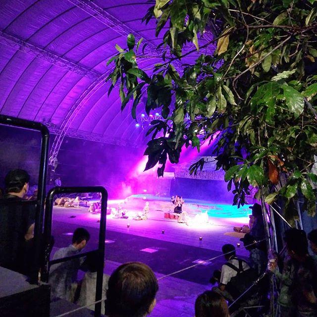 8月16日から18日の間、グエンフエ通りで水上人形劇フェスが開催されました。水上人形劇はベトナム北部の伝統芸能でホーチミンにも劇場があります。ベトナムの文化を代表するこの人形劇、見たことありますか??水上人形劇とは字のそのまま、水の上を人形が演じる芸です。人形操者は舞台裏から人形を操作しますが、その姿は客席からは見えません。どうやって動かしているのかは秘密だそうです。さて、そんなフェスティバルをうさぎやのお客様と見学に行ってきました!残念ながら来場者が多く、水上人形劇は隙間からちょっと見れただけでしたが、会場になっているグエンフエ通りは他にも影絵やライブなど、いろいろなパフォーマンスが行われていました。めちゃめちゃデカい人形も飾ってあり、いつもと違う雰囲気で素敵なホーチミンの夜でしたヽ(・∀・)ノ.ホーチミンの日本人ゲストハウス兎家(うさぎや)ゲストハウスusagiyah.comLINE ID: usagiyahご予約、お問い合わせはLINEからでもOKです♪.#usagiyah #日本人宿 #ゲストハウス #ドミトリー #Guesthouse # #Vietnam #ホーチミン #hochiminh #バックパッカー #backpacker #girlstravel #_タビジョ #バックパッカー女子 #一人旅 #旅行 #海外 #旅好きの人と繋がりたい #フォトジェニック #photgenic #インスタ映え #インスタジェニック #水上人形劇 #伝統芸能 #伝統 #人形 #人形劇 #グエンフエ通り